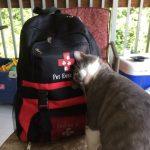 Cat Pet Evacuation Pack