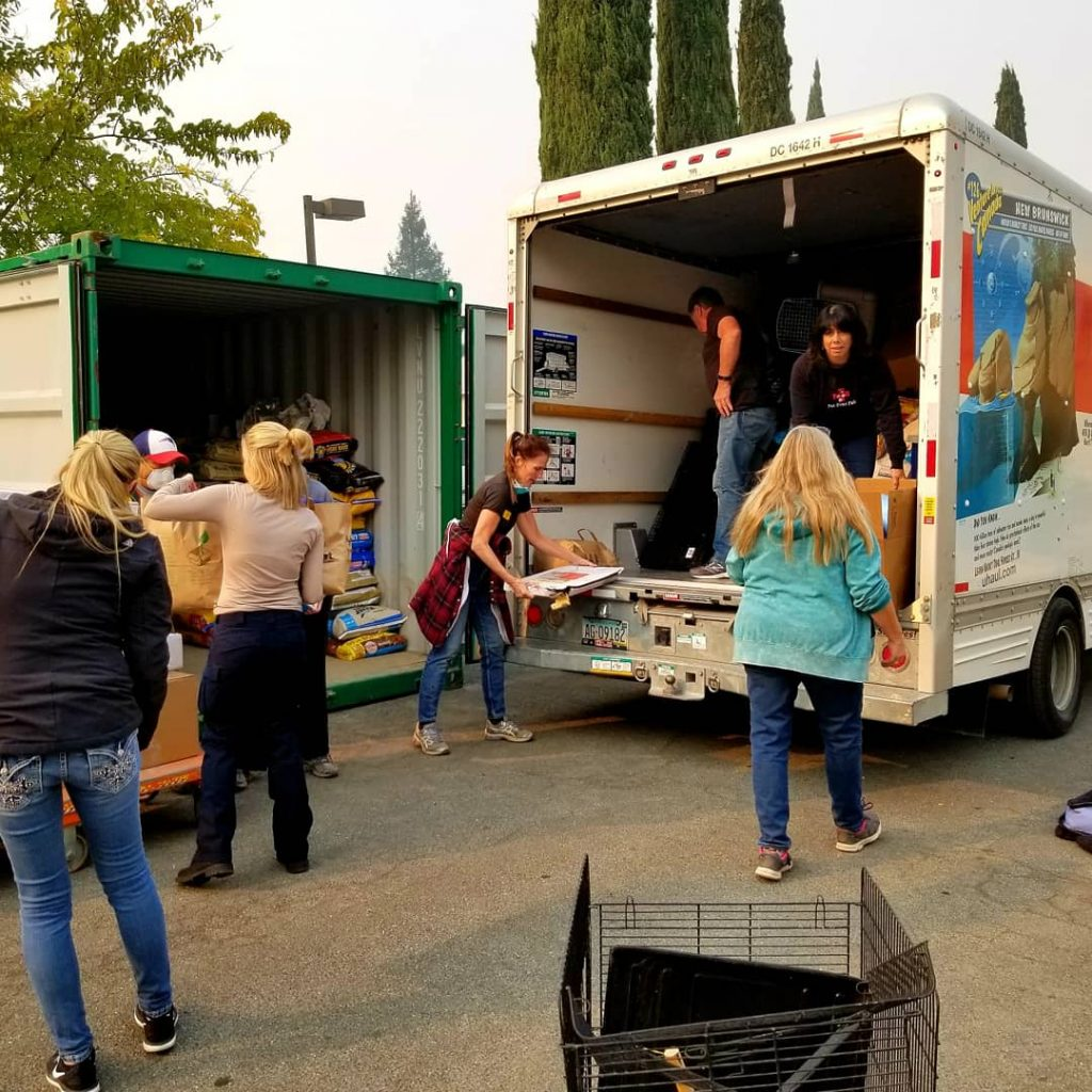 Delivery of pet supplies for Camp Fire victims