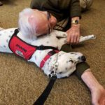 Therapy Dog Marshall at Senior Home